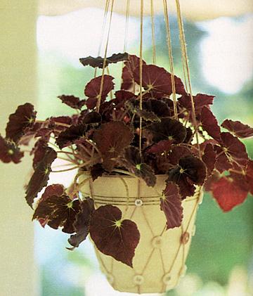 Плетеная подставка для цветов, Подвесной цветочный горшок